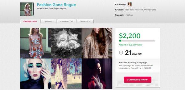 FGR / Indiegogo Update