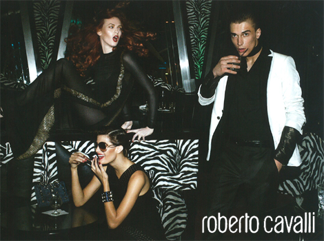 Roberto Cavalli Fall/Winter 09.10