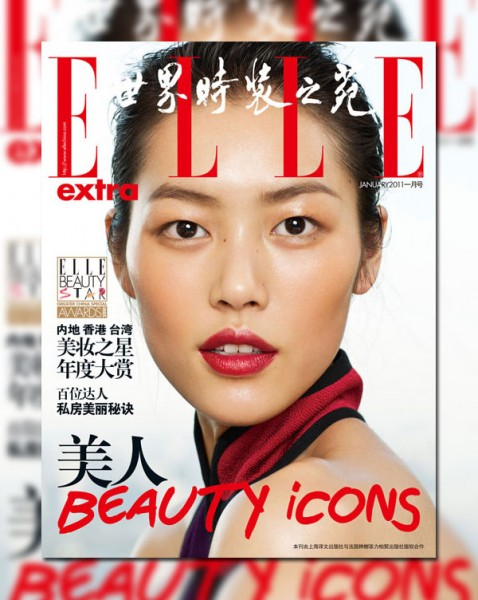 <em>Elle China Extra</em> January 2011 Cover | Liu Wen by Yuan Gui Mei