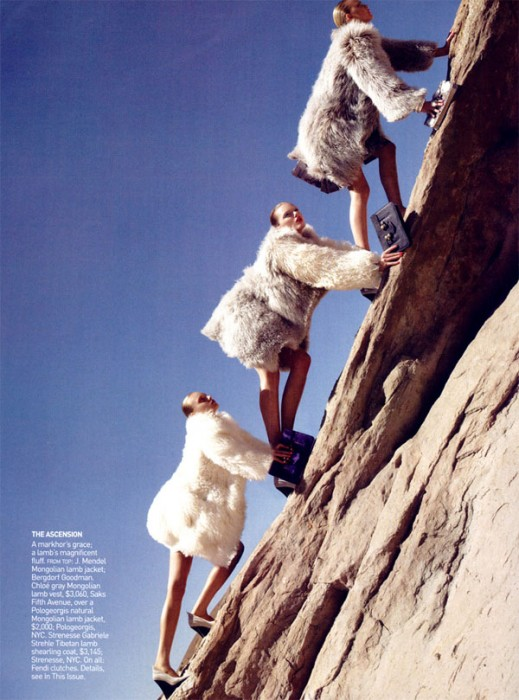 Photo of the Day   Climbing to the Top
