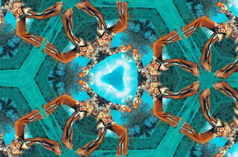 "Roberto Cavalli Celebrates Fall Accessories with  ""Psychotic Love "" ."