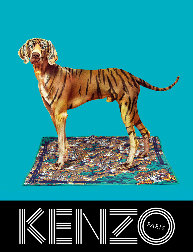 kenzo fall campaign3 Sean OPry Takes Flight for Kenzo Fall/Winter 2013 Campaign