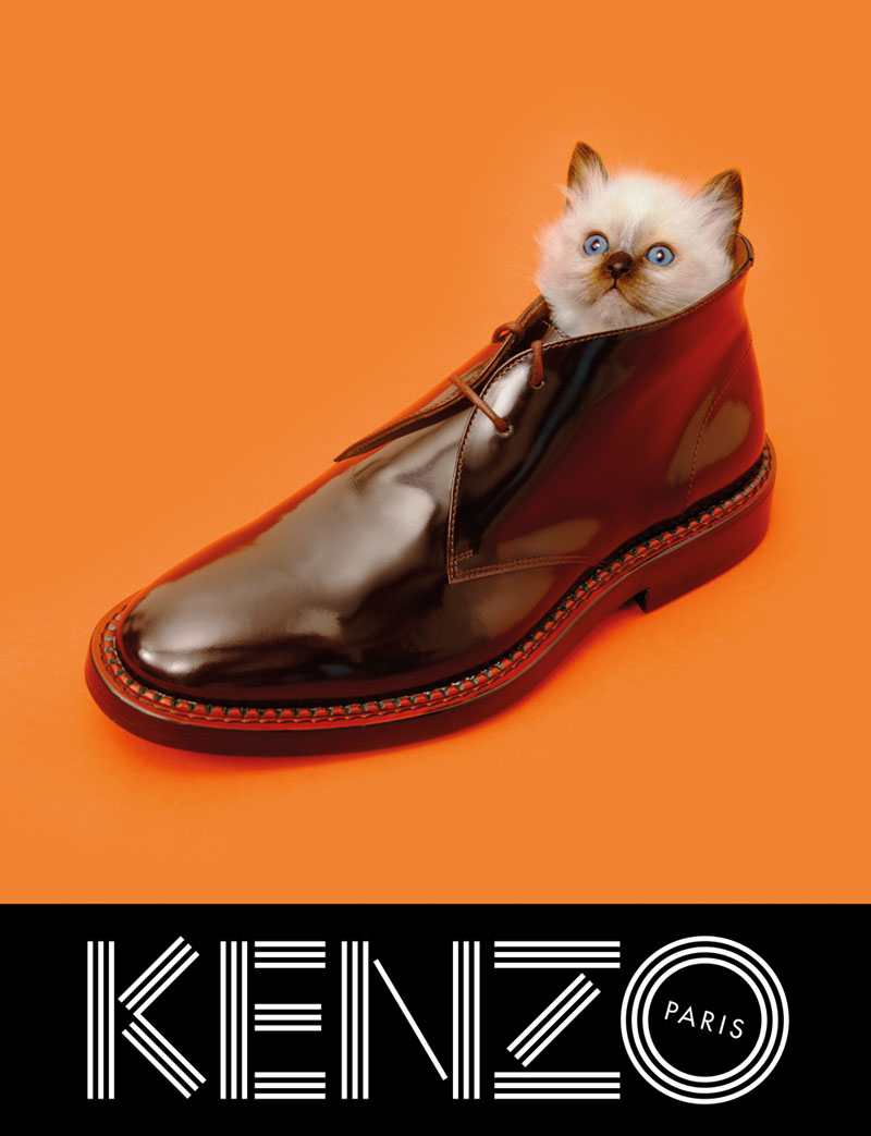 kenzo fall campaign5 Sean OPry Takes Flight for Kenzo Fall/Winter 2013 Campaign