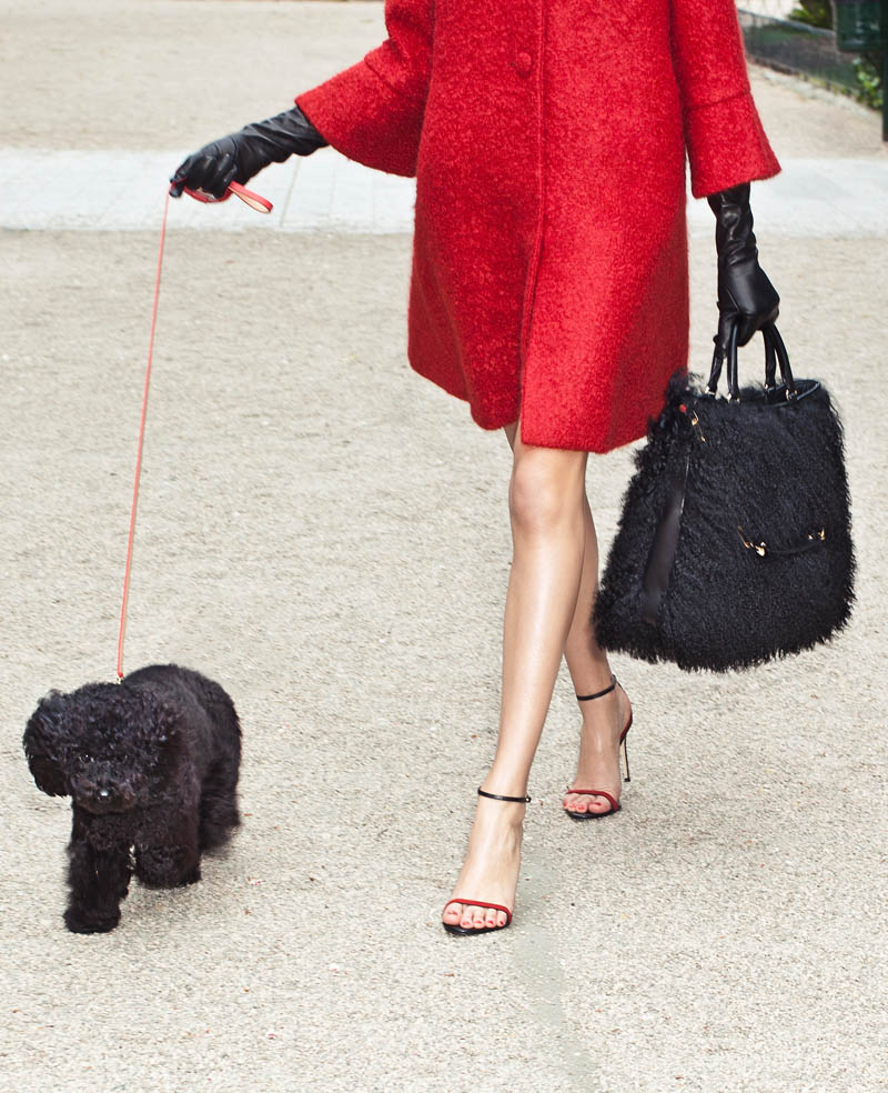 carolina herrera gaspar collection3 Carolina Herreras New Handbag Collection Goes to the Dogs