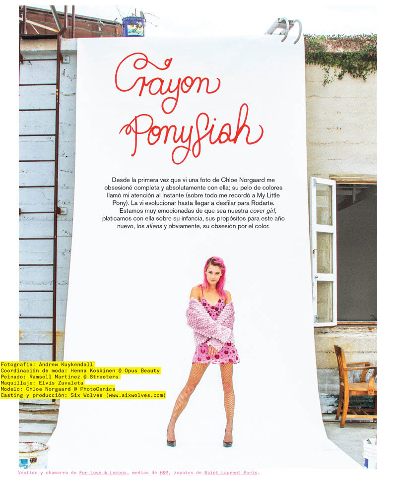 chloe norgaard hair2 Chloe Norgaard Rocks Colorful Braids for Nylon Mexico by Andrew Kuykendall