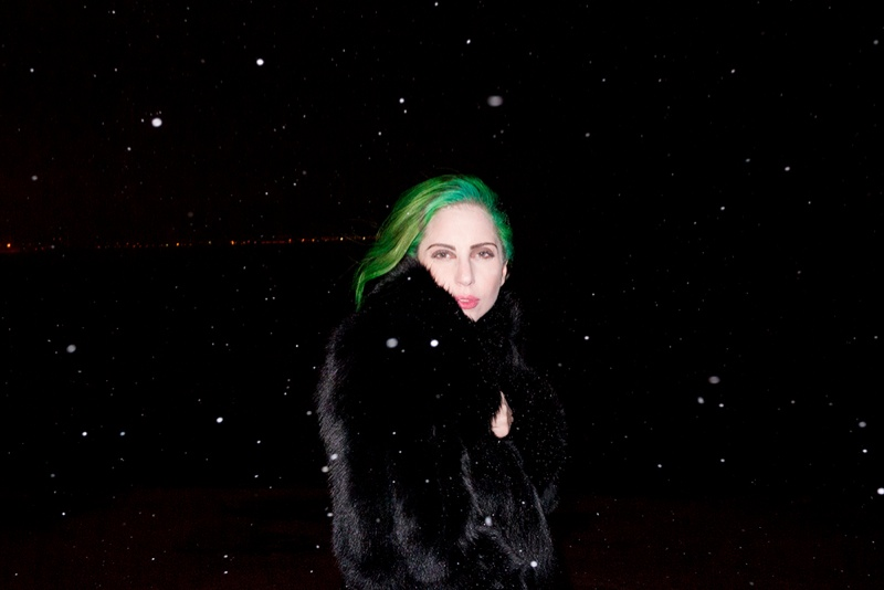 lady gaga by terry8 Lady Gaga Rocks Green Hair in Terry Richardson Photos