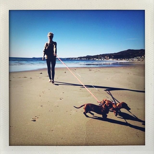rosie beach dogs Instagram Photos of the Week | Cara Delevingne, Alyssa Miller + More Model Pics