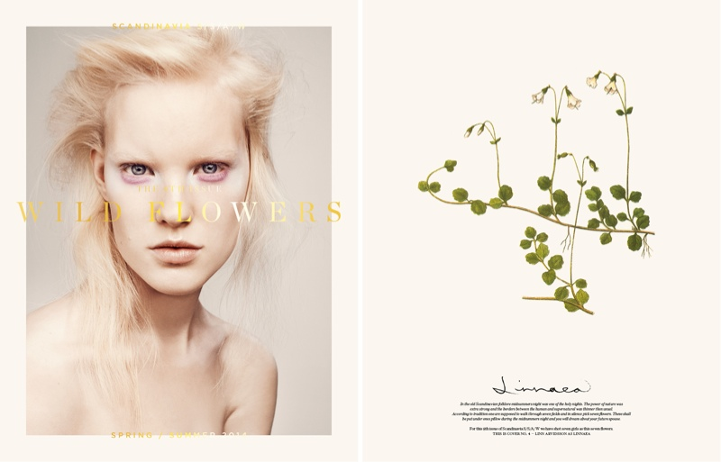 scandinavia ssaw cover4 Nadja Bender, Juliane Gruner, Hedvig Palm + More Cover Scandinavia S/S/A/W