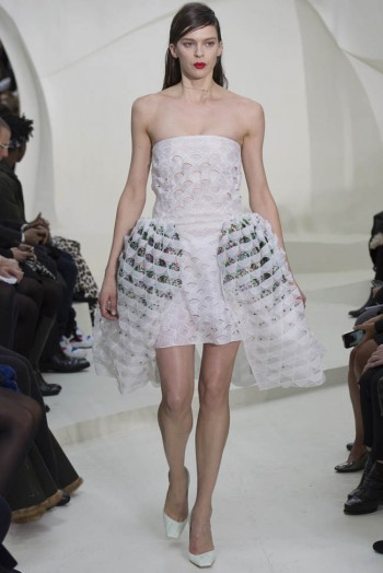 dior-haute-couture-spring-2014-show30