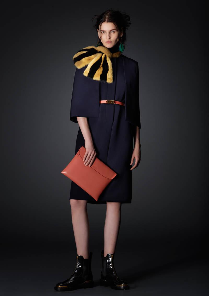 http://www.fashiongonerogue.com/wp-content/uploads/2014/01/marni-prefall-2014-22.jpg