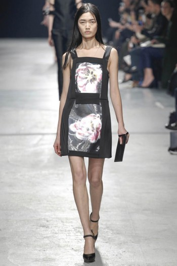 christopher-kane-fall-winter-2014-show35