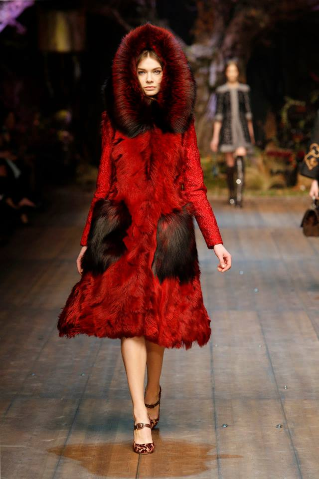 Dolce and Gabbana Milan Fashion Week a/w2014 -15