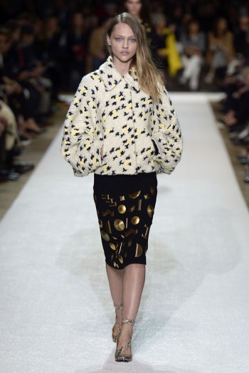Chloe Fall/Winter 2014   Paris Fashion Week