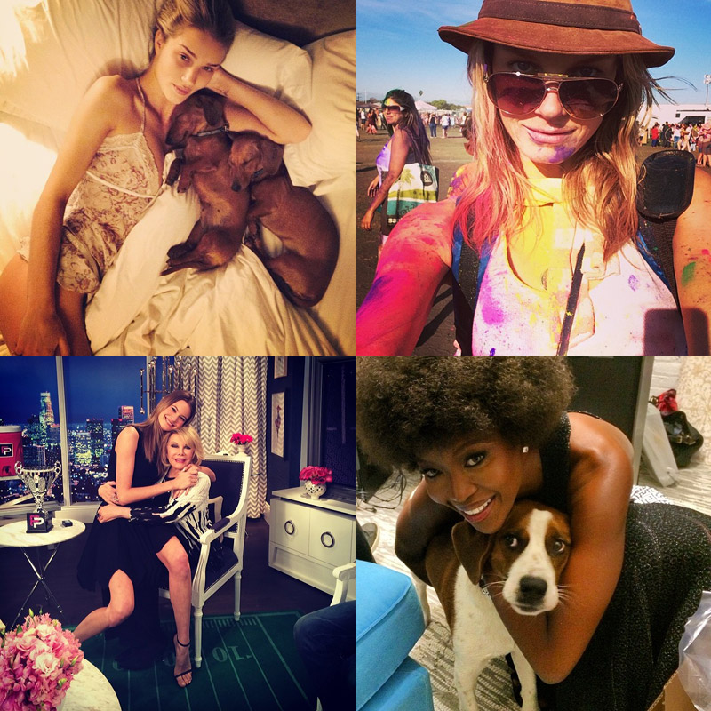 instagram models dogs Instagram Photos of the Week | Naomi Campbell, Angela Lindvall + More Models