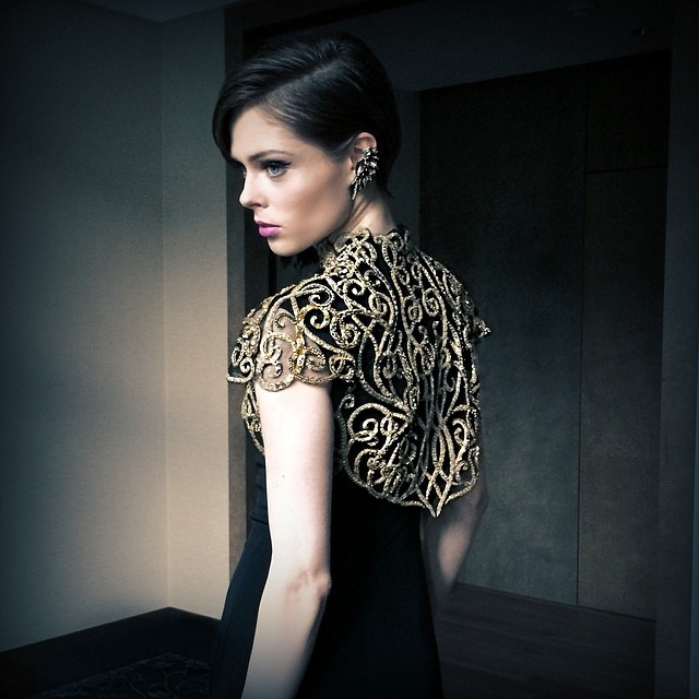 "Coco Rocha pre the ""Vienna Awards"""