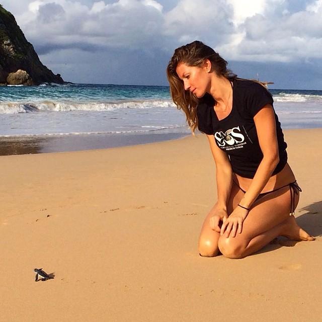 Gsiele Bundchen gazes at a baby turtle
