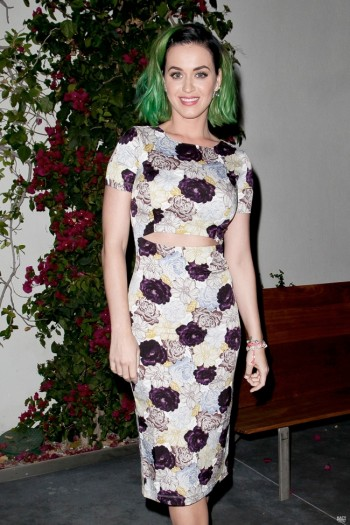 Katy Perry Shows Off New Hair in Suno at Marianne Williamson Event