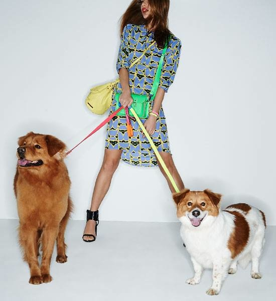 shopbop dogs spring accessories7 Cute Alert: Shopbop Enlists Dogs to Model Spring Accessories