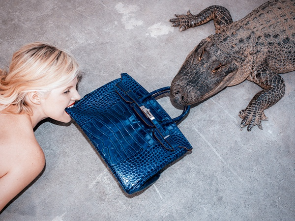 birkin alligator tyler shields3 In Other News, Here Are Photos of a $100,000 Birkin Bag Being Fed to an Alligator