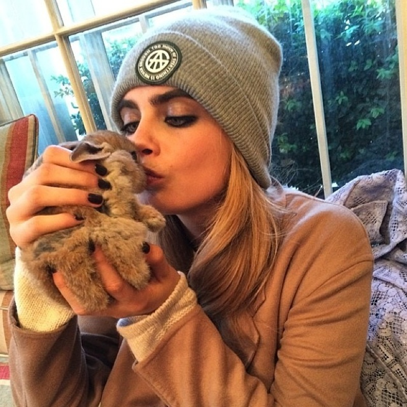 Cara and her bunny Cecil Delevingne