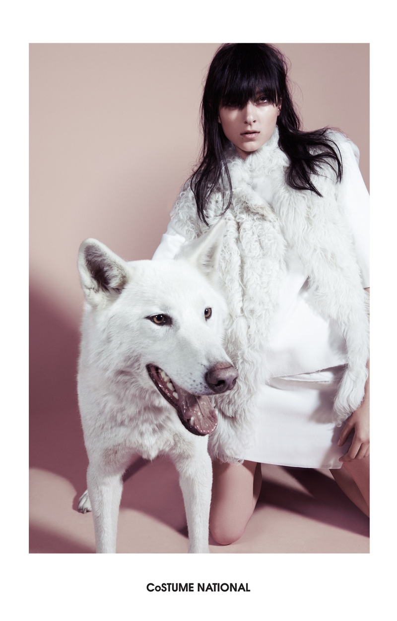 Costume National's fall campaign features a wolf-dog
