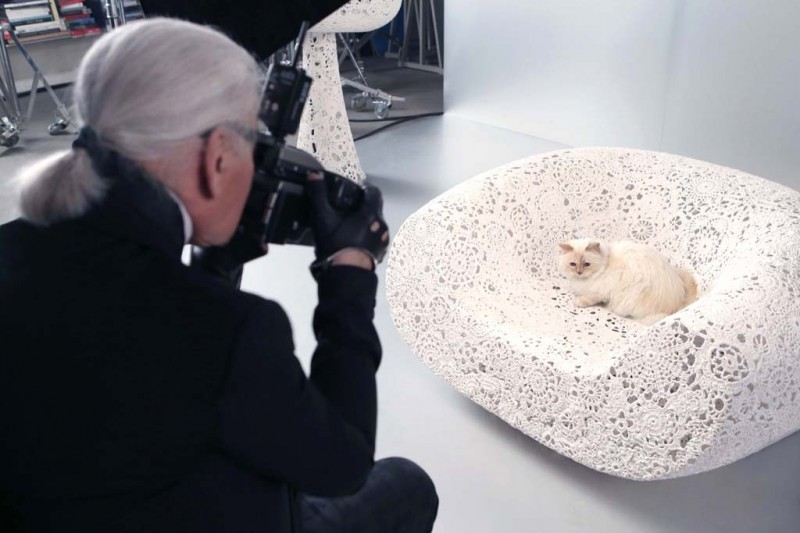 choupette lagerfeld shooting 800x533 Karl Lagerfeld's Cat Choupette to Star in Holiday Makeup Ad for Shu Uemura