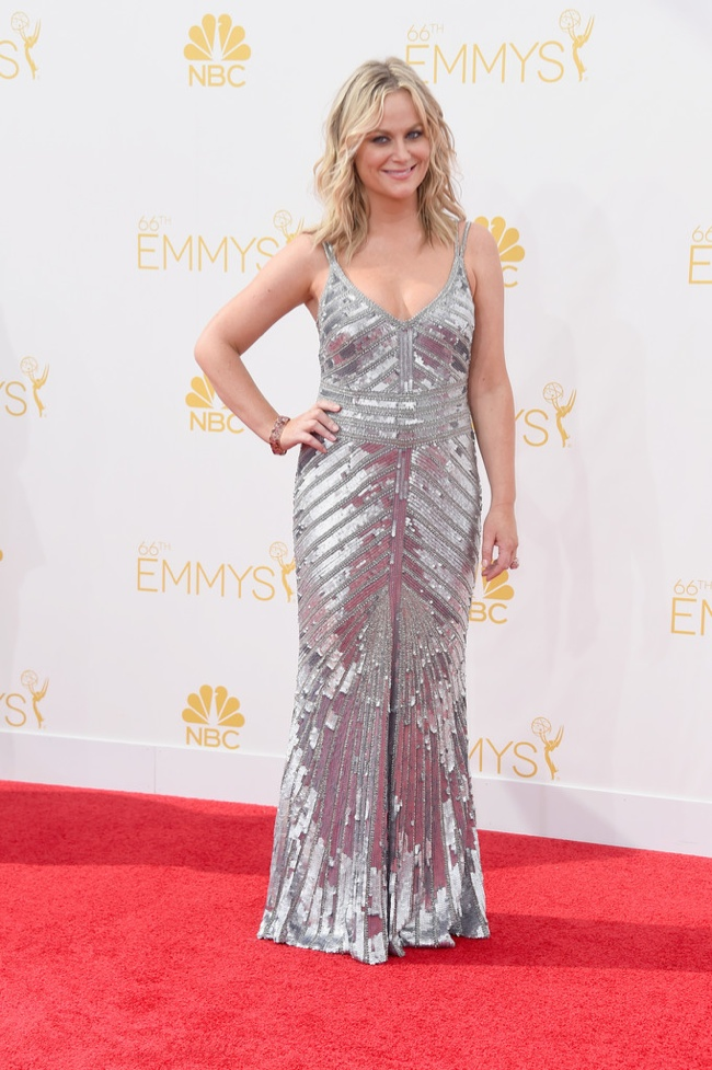 Amy Poehler in silver Theia gown
