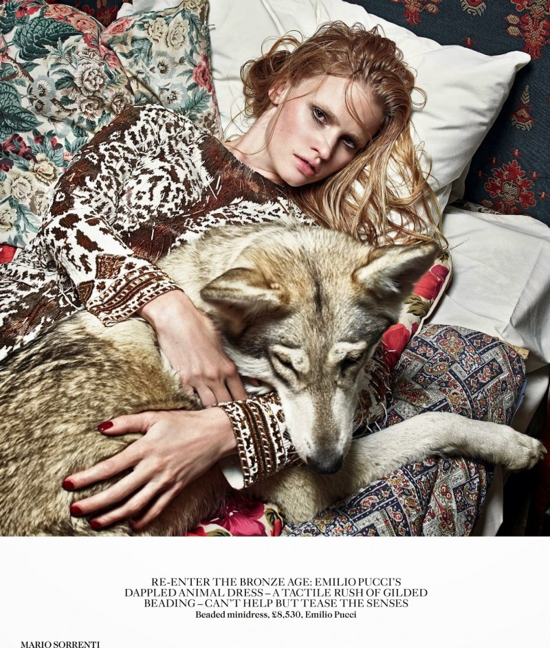 lara vogue uk004 800x943 Lara Stone Poses with Fur, Wolves for Vogue UK Shoot by Mario Sorrenti