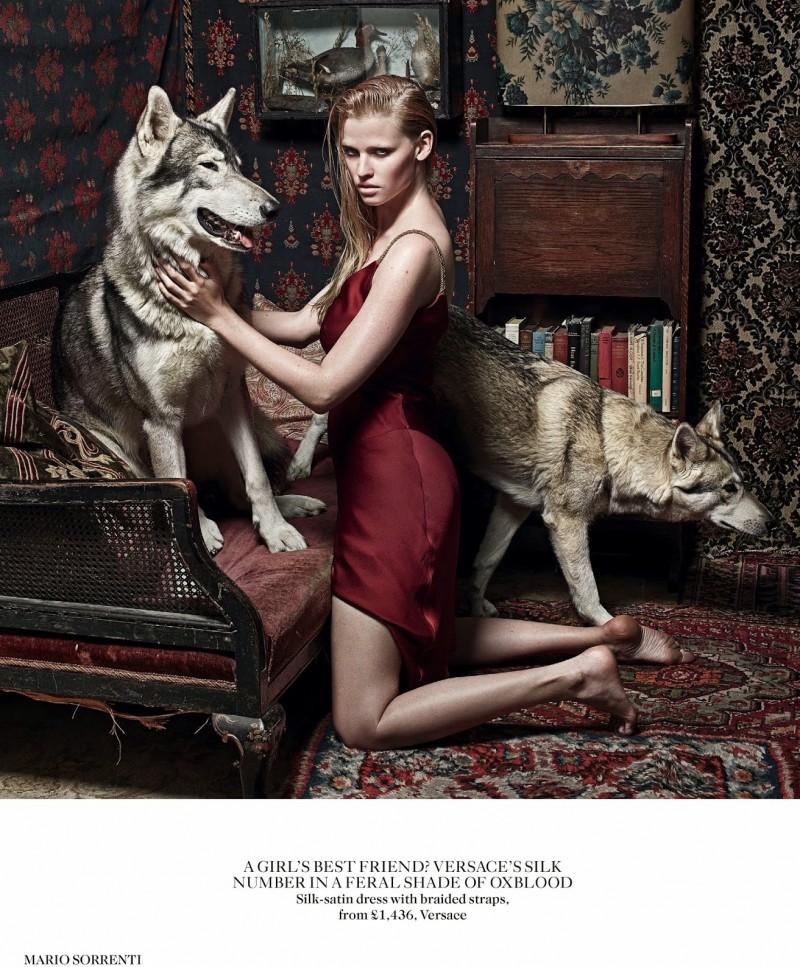 lara vogue uk007 800x967 Lara Stone Poses with Fur, Wolves for Vogue UK Shoot by Mario Sorrenti