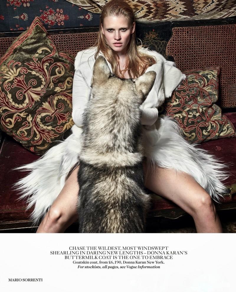 lara vogue uk010 800x989 Lara Stone Poses with Fur, Wolves for Vogue UK Shoot by Mario Sorrenti