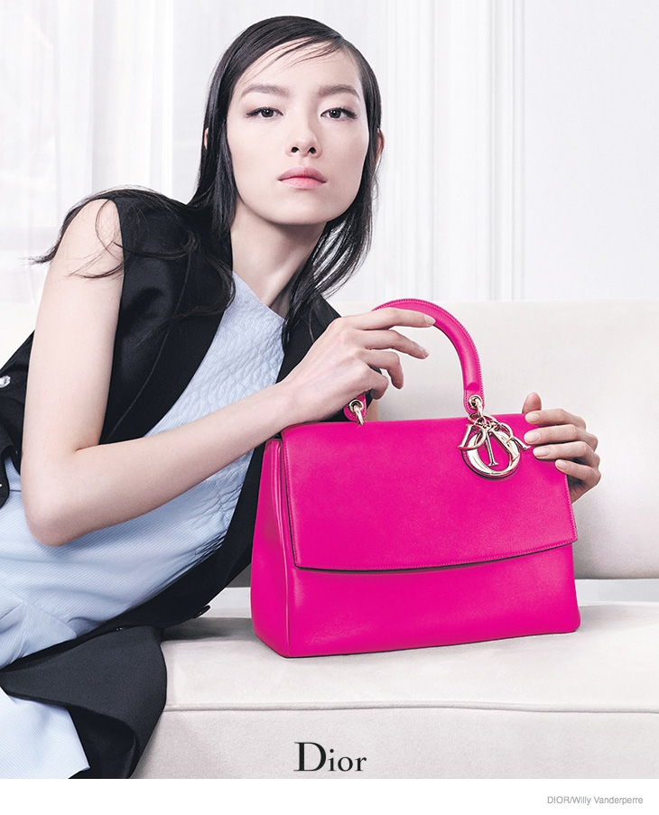 Fei Fei Sun & Julia Nobis Model Dior Accessories for Fall 2014 Ads