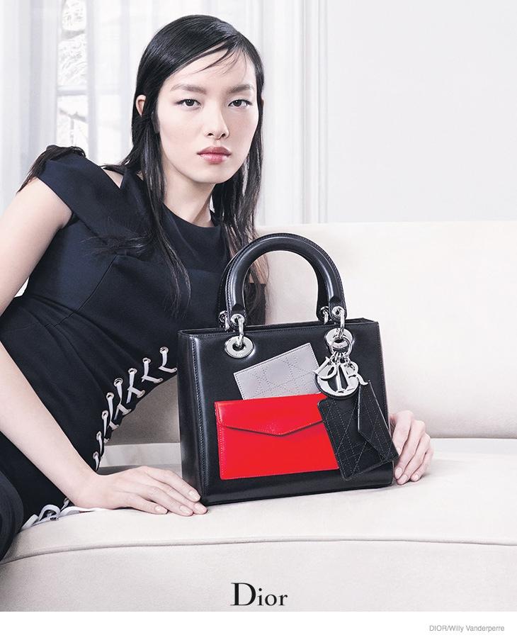 dior-accessories-2014-fall-ad-campaign02