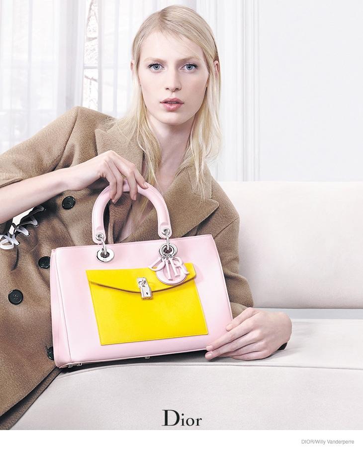 dior-accessories-2014-fall-ad-campaign03