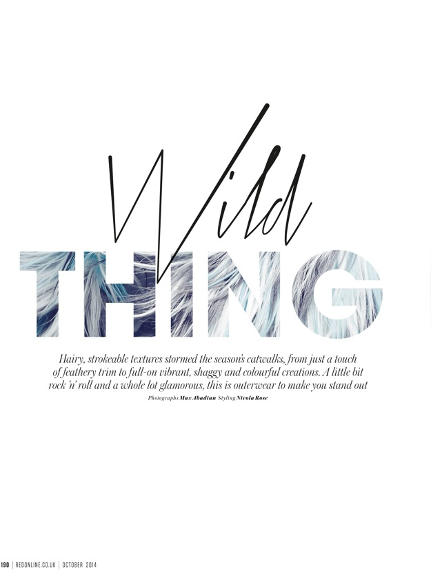 wild-thing-title-page