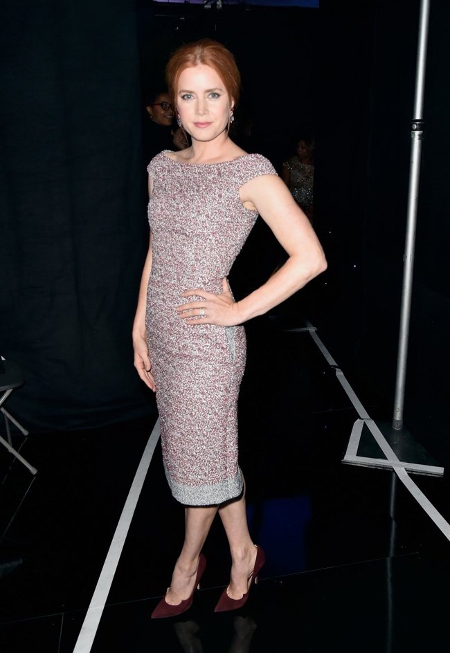 Amy Adams wore a form-fitting Dior dress