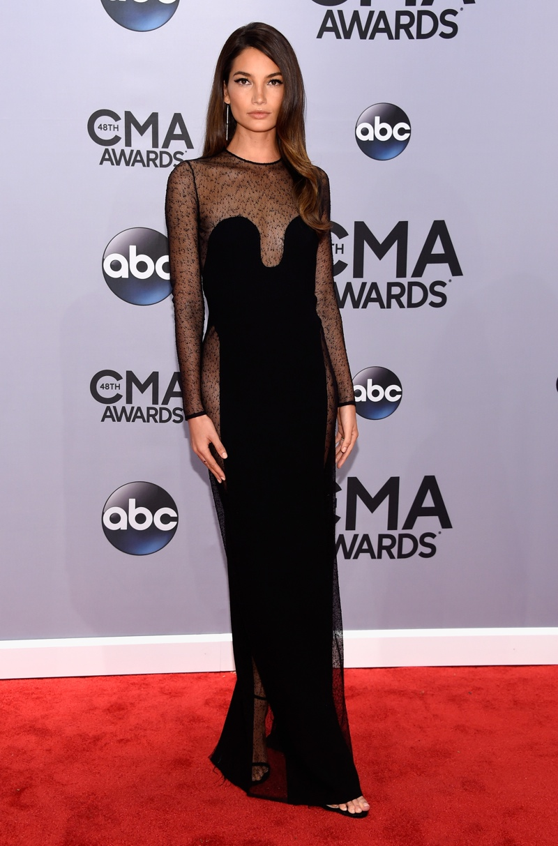 Lily Aldridge Stuns in Calvin Klein Collection Gown at 2014 CMA Awards