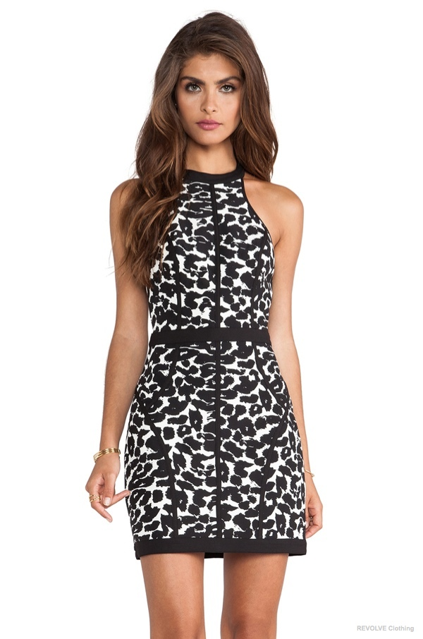 Finders Keepers 'Winters Birds' Dress in Black Leopard Print available at REVOLVE Clothing for $112.00