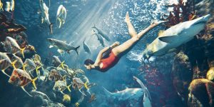 Week in Review | Rihanna Poses Underwater, Photoshop Free Models + More