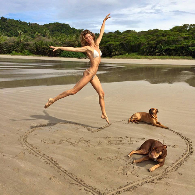 Gisele Bundchen hits the beach with her dogs. Photo via Instagram.