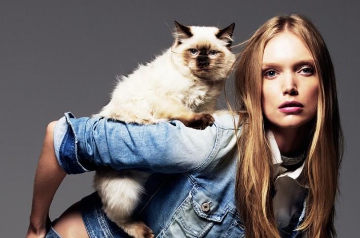 denim-cats-fashlon05