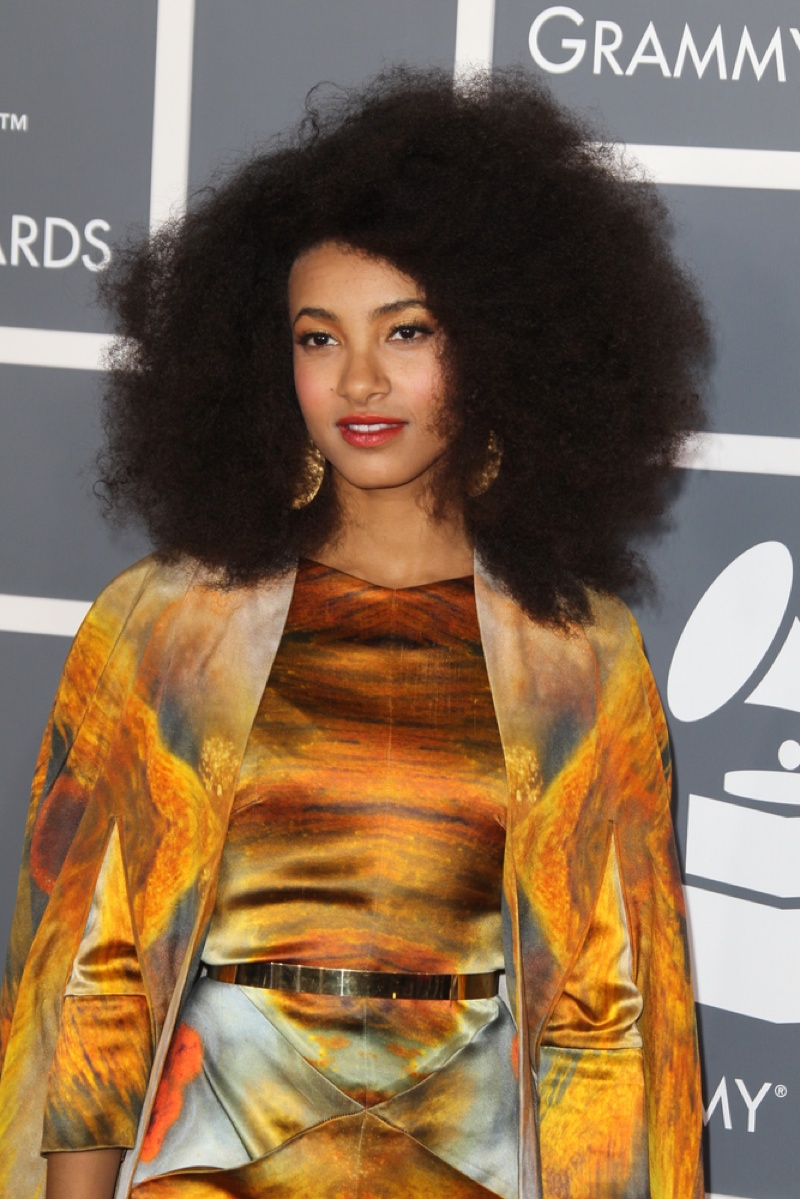 Grammy winner Esperanza Spalding rocks her natural hair in a shaped style. Helga Esteb / Shutterstock.com