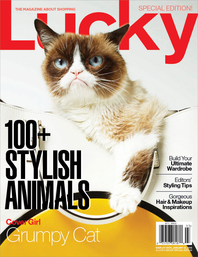 Grumpy Cat covers special edition issue of Lucky.
