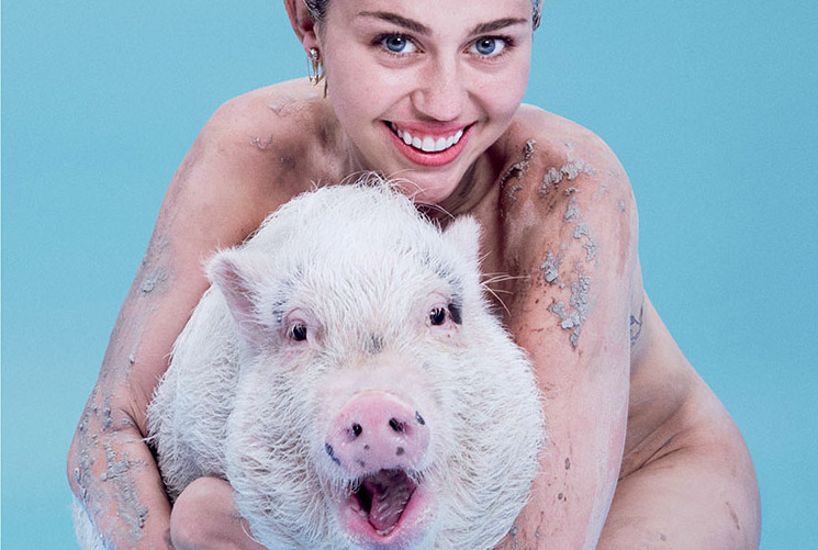 Miley Cyrus Poses Naked with a Pig on Paper Magazine Cover