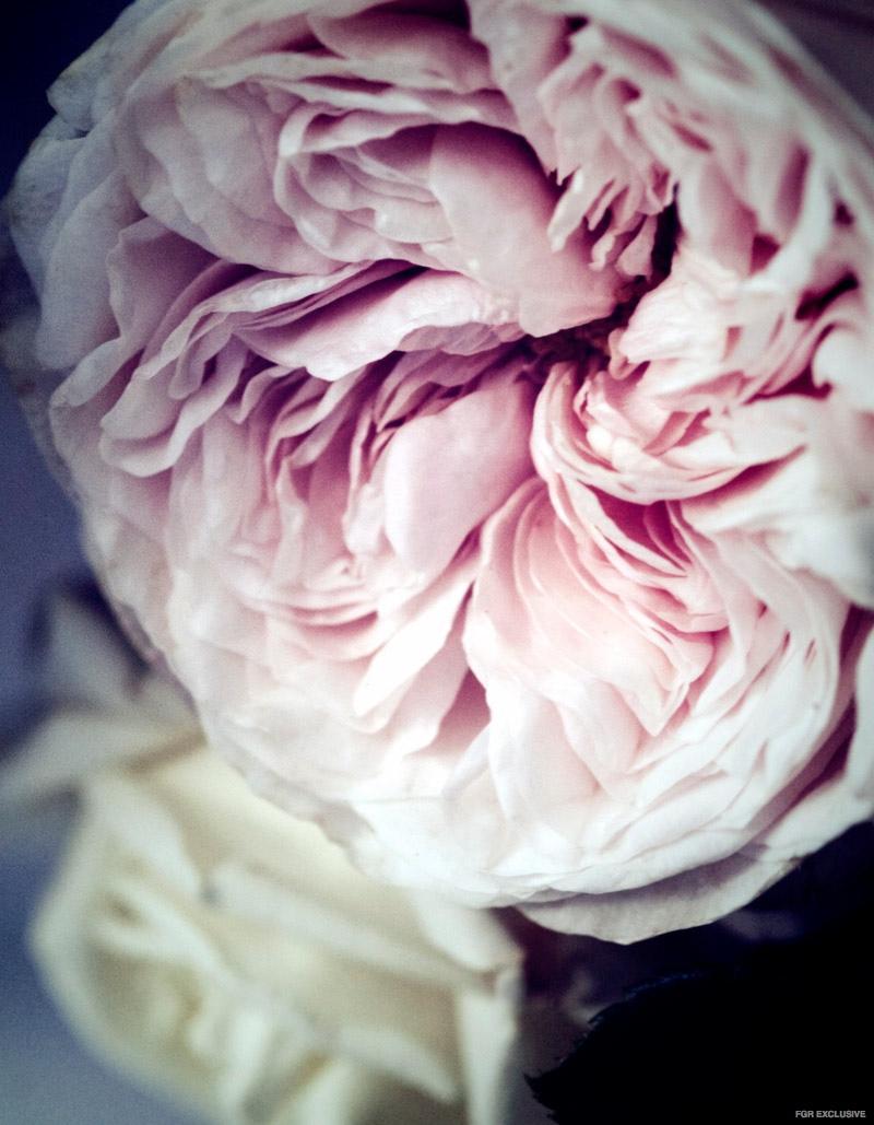 FlowerFashionEditorial09