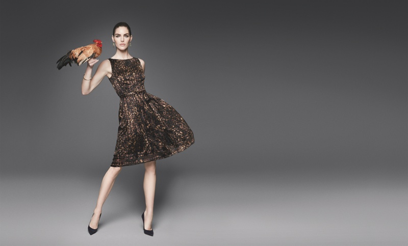 Hilary Rhoda stars in Dressbarn's fall-winter 2015 campaign