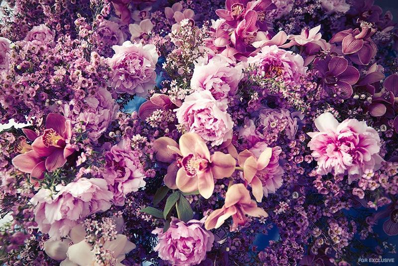 Lily-Nova-Flowers-Editorial02
