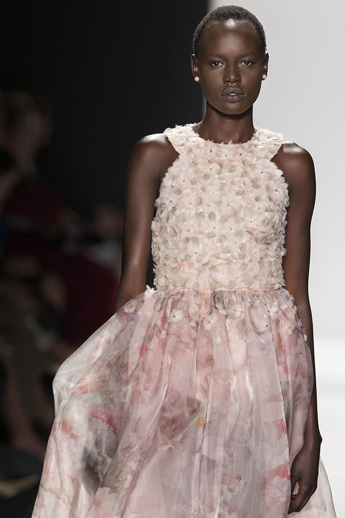 Ajak Deng Quits Modeling - Find Out Why