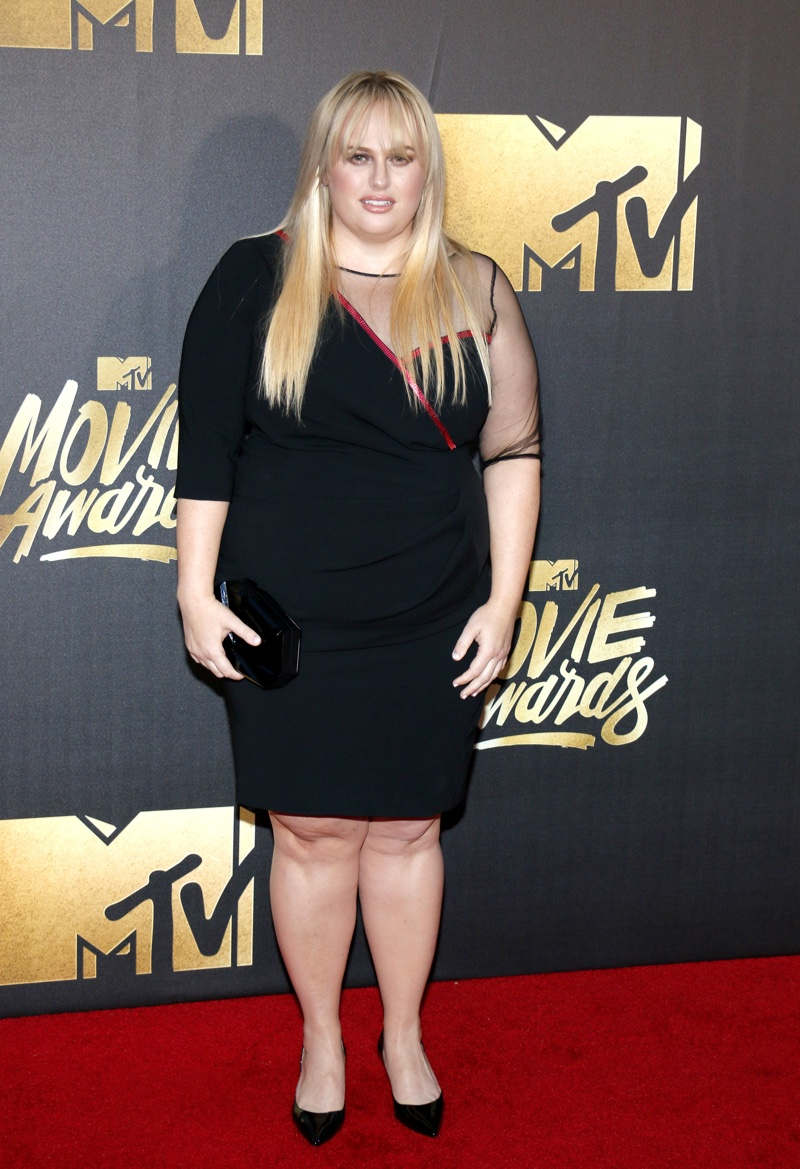 Rebel Wilson sported a black Marina Rinaldi dress with sheer detail. Photo: Tinseltown / Shutterstock.com