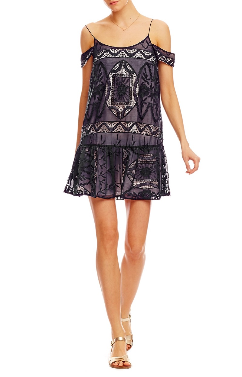 Nicole Miller La Plage Embroidered Crinkle Chiffon Dress