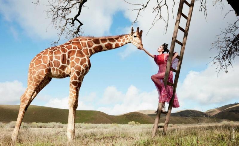 Fei Fei Sun Goes On a Fashion Safari for South Coast Plaza